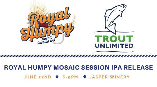 Madhouse Royal Humpy Mosaic Session IPA Release